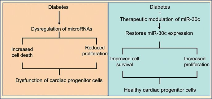 Discovery for treatment of heart disease in type-2 diabetics