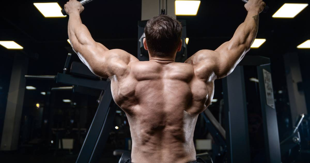 Does Protein Distribution Effect Muscle Mass?